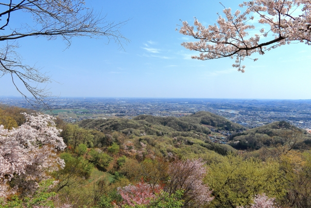 [Trail Walk・埼玉]お花見トレイルウォーク 関東百名山 鐘撞堂山 21.04.10 sat.