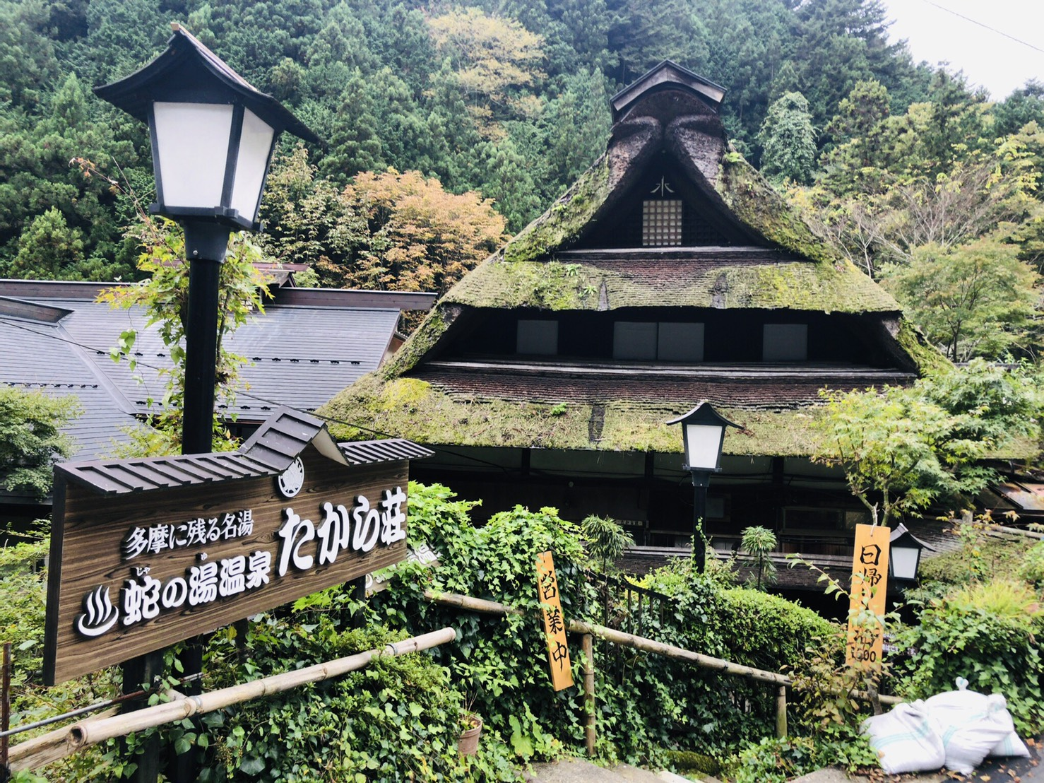 [温泉ハイク・東京]関東百名山 三頭山 & 蛇の湯温泉 2021年8月15日(日)